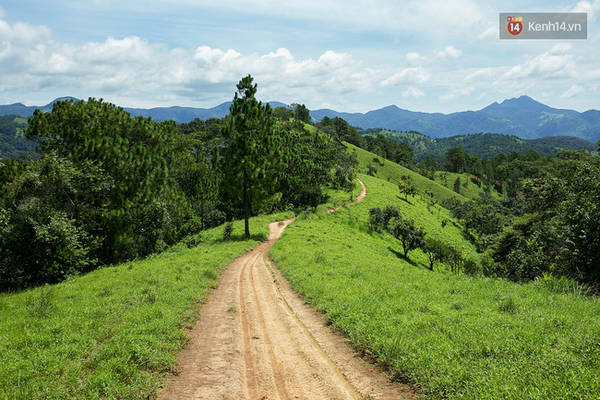 trekking-va-cam-trai-o-doi-ta-nang-di-de-thay-minh-con-tre-va-con-nhieu-noi-phai-chinh-phuc-ivivu-17