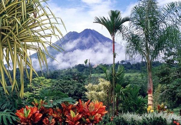 """Theo Brian Morgan, chuyên gia Adventure Life, """"Costa Rica là nơi khởi nguồn du lịch sinh thái của châu Mỹ Latin"""" nhờ số lượng lớn các loài động thực vật hoang dã. Tại đây du khách sẽ có những trải nghiệm đặc biệt như bơi lội cùng rùa biển, tìm hiểu về cà phê, cacao hay nền nông nghiệp xuất khẩu chuối."""