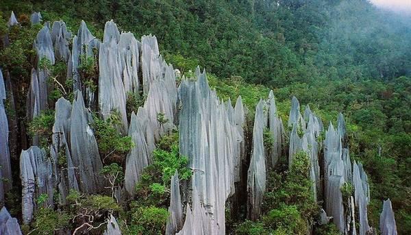 Borneo của Malaysia là điểm đến thiên đường cho những ai yêu thế giới tự nhiên hoang dã. Họ thường là các nhóm du lịch nhỏ có ý thức về sinh thái và sẵn sàng ở cùng người dân địa phương. Ngoài ra, Borneo còn là nơi gặp gỡ những chú voi lùn hiếm có ở châu Á và báo gấm Sunda.