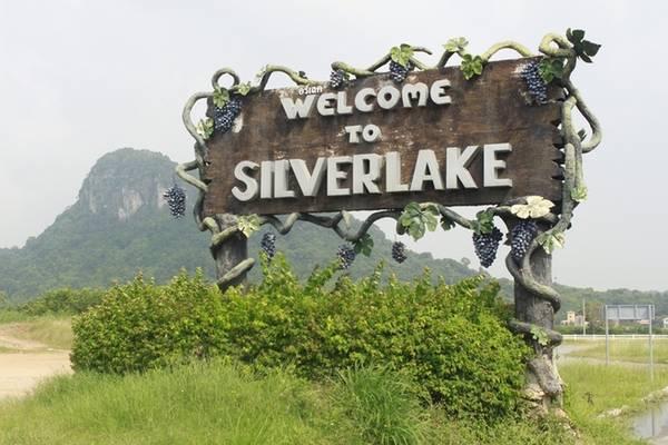 Từ trung tâm Pattaya, bạn có thể dễ dàng đi đến vườn nho Silverlake dựa vào google map hoặc các phần mềm bản đồ offline. Đường đi thoáng, không kẹt xe, tuy nhiên đoạn quốc lộ có nhiều xe lớn chạy nhanh. Nếu di chuyển bằng xe máy thì bắt buộc người cầm lái phải thật vững tay.