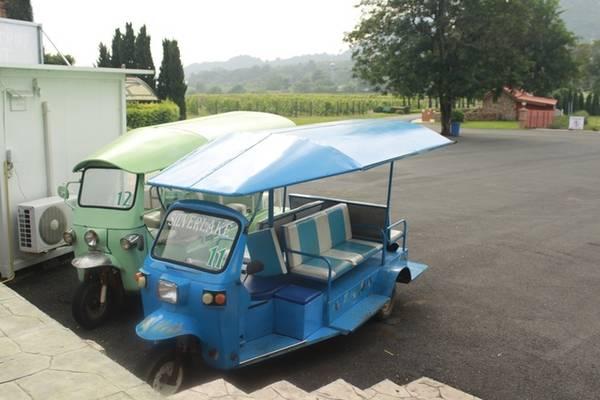 Diện tích khu này rất rộng nên khu vực đi bộ tham quan bị giới hạn, tránh trường hợp du khách đi lạc. Nếu muốn xuống tận vườn, bạn có thể đăng ký tour xe tuktuk để đi hết mọi ngõ ngách của Silverlake. Giá dịch vụ từ 100 đến 250 baht/người (khoảng 65.000 - 165.000 đồng) tùy gói.