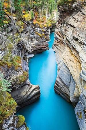Vườn quốc gia Jasper ở tỉnh Alberta, Canada - Ảnh: National Geographic