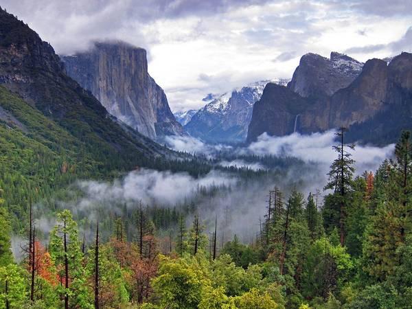 Công viên quốc gia Yosemite, California. Bên trong khu vực rộng hơn 1.200 m2 này có những thác nước hùng vĩ, thung lũng, đồng cỏ, cổ tùng đại thụ... Hồi tháng 8, Tổng thống Mỹ Obama đã đưa cả gia đình tới đây nhân dịp kỷ niệm 100 năm thành lập công viên. Ảnh: Getty.