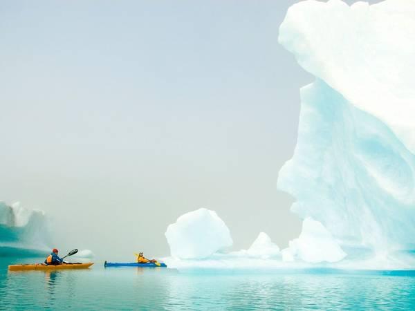 Công viên quốc gia vịnh Kenai, Alaska, nơi có một trong những đồng băng lớn nhất nước Mỹ. Ảnh: Alamy.