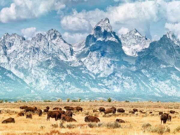 Công viên quốc gia Grand Teton với đỉnh núi cùng tên cao nhất công viên - 4.200 m, thuộc bang Wyoming. Ảnh: Getty.