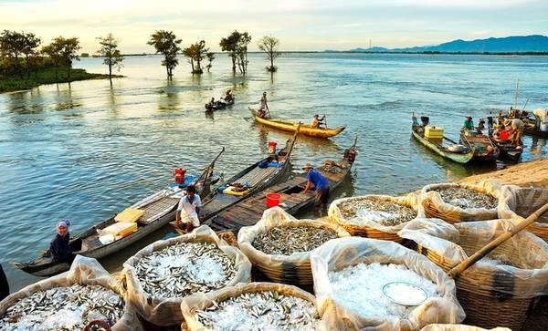 Huỳnh Phúc Hậu là nhiếp ảnh gia nổi tiếng về đề tài miền Tây, đặc biệt là vùng đất An Giang. Nếu vào mùa khô, An Giang là xứ nóng bụi thì từ tháng 8 đến tháng 10 hàng năm, các cánh đồng chìm trong biển nước.