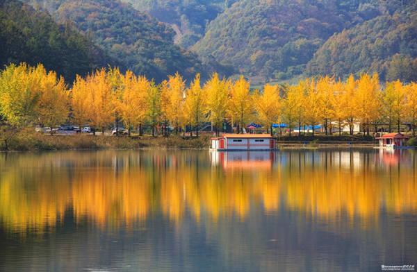 Khách du lịch Việt thường chỉ quen với điểm đến quen thuộc là thủ đô Seoul và con đường lá vàng ở đảo Nami. Nhưng Hàn Quốc còn rất nhiều nơi đẹp đến nao lòng giữa tiết trời thu mà có thể bạn còn chưa từng nghe qua.