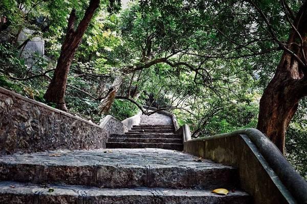 Động Am Tiên ở lưng chừng núi, để đến được đây phải leo qua 205 bậc đá qua vách núi. Động có hình giống như miệng con rồng nên còn được gọi là hang rồng.