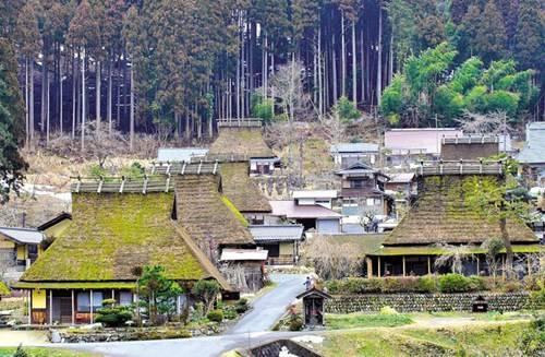 Ngôi làng được rừng già bao bọc