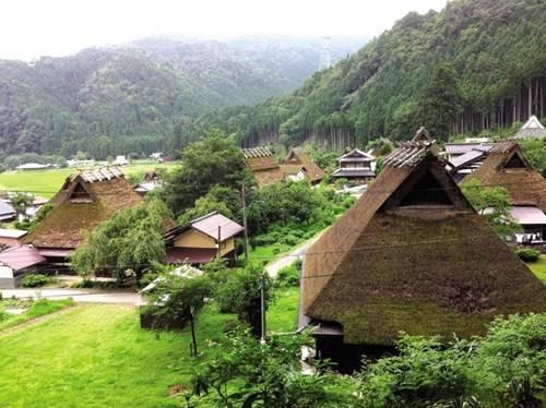 Những mái nhà tranh cả trăm tuổi