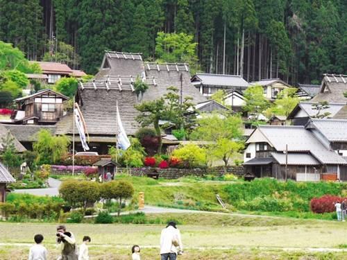 Đường làng sạch tinh và nhiều hoa