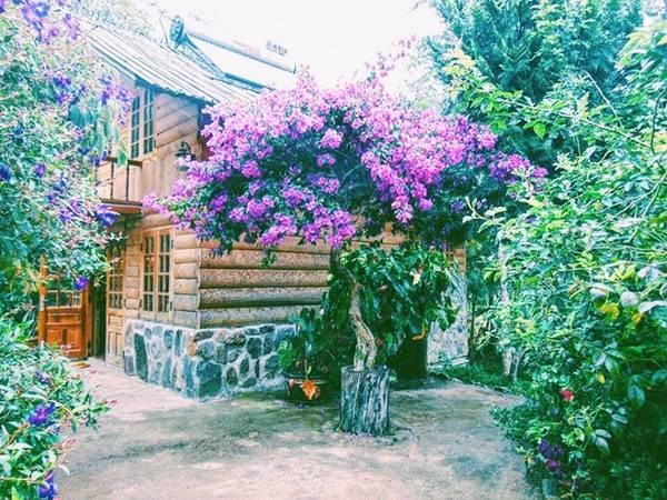 Vẻ đẹp hoang sơ của những căn nhà gỗ như đưa du khách lạc vào thế giới cổ tích.