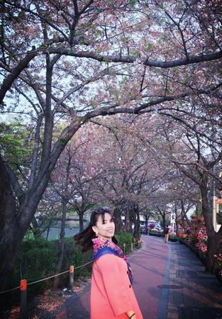 Thời điểm thích hợp nhất để đi Hàn Quốc vào mùa xuân, theo nàng MC, là tháng 3-4. Muốn chụp ảnh hoa anh đào đẹp, bạn nên ra ga Toà nhà quốc hội Line 9. Ở đây, dân Hàn Quốc dựng trại ở công viên ngắm hoa anh đào, ăn uống, hát hò, ngắm hoa, cắm trại thành một khu rất vui.