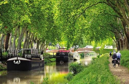 Du khách đạp xe dọc Canal du Midi