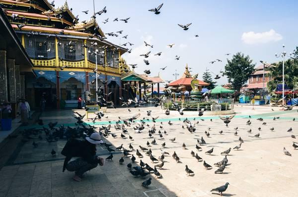 Chùa Phaung Daw Oo - chốn thành tâm cho các phật tử sinh sống ở khu vực lòng hồ Inle