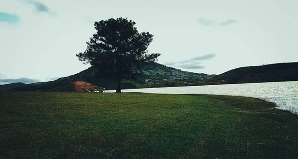 Đích đến chính là cây thông cô đơn, sở dĩ có tên gọi này vì nó đứng sừng sững, đơn độc trong không gian rộng lớn, trước mặt là hồ nước rộng mênh mông, sau lưng là rừng thông xanh bạt ngàn.