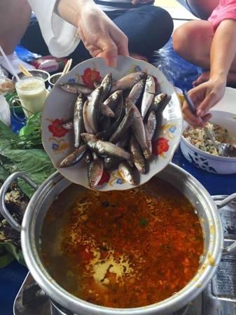 Nói đến miền Tây mùa nước nổi mà chưa từng nếm thử món lẩu cá linh bông điên điển thì bạn chưa cảm nhận trọn vẹn nơi đây.