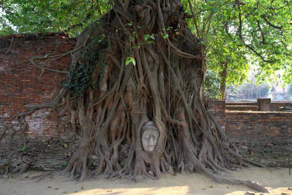 Tỉnh Phra Nakhon Si Ayutthaya