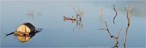 Khi nước hồ dâng cao, làm cây chết khô, tạo nét đặc trưng riêng, là nguồn cảm hứng cho những ai thích chụp ảnh.