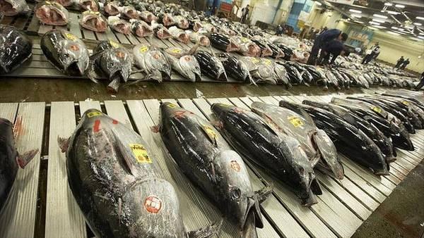 Với sự đảm bảo về chất lượng hàng hóa, vệ sinh an toàn thực phẩm... - Ảnh: tolyotravel