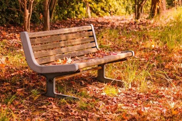Với nhiều du khách quốc tế, mùa thu là mùa đẹp nhất trong năm của Nhật Bản bởi khí hậu mát lành, nắng ấm trải dài, thích hợp thực hiện những trải nghiệm khám phá xuyên suốt mà không ảnh hưởng đến cơ thể.