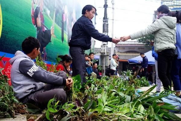 Mua cây cảnh, hoa lan rừng Ngay cổng chợ là một khu bán hoa lan rừng với nhiều loại khác nhau. Mỗi gốc lan ở đây chỉ từ vài chục tới 100.000 đồng.