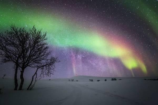 Bắc cực quang huyền ảo trên quê hương ông già Noel
