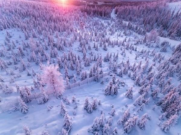 Tuyết phủ trắng Lapland mùa đông