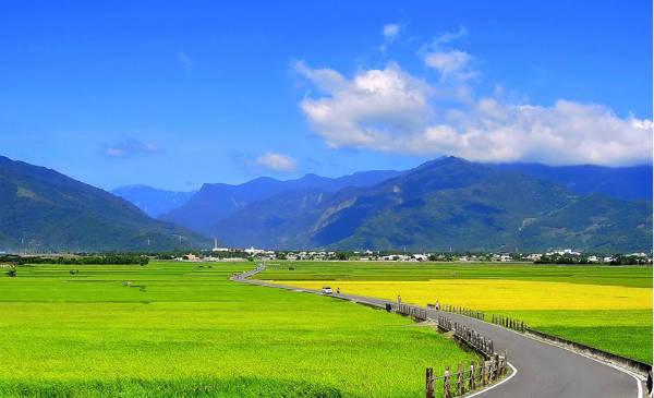 Để ngắm lúa vàng rực, bạn nên đi vào khoảng tháng 9-10, còn muốn đi giữa cánh đồng lúa mạ non thì bạn có thể chọn thời điểm tháng 4-5.