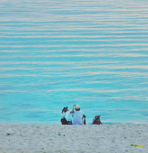Du lịch bình thuận dao-phu-quy-ivivu-3 Nghỉ Tết dương lịch hãy check-in ngay 2 hòn đảo ở Bình Thuận đẹp mê hồn Khám phá Đi bằng gì Điểm đến    Du lịch bình thuận dao-phu-quy-ivivu-7 Nghỉ Tết dương lịch hãy check-in ngay 2 hòn đảo ở Bình Thuận đẹp mê hồn Khám phá Đi bằng gì Điểm đến    Du lịch bình thuận dao-phu-quy-ivivu-9 Nghỉ Tết dương lịch hãy check-in ngay 2 hòn đảo ở Bình Thuận đẹp mê hồn Khám phá Đi bằng gì Điểm đến    Du lịch bình thuận dao-phu-quy-ivivu-1 Nghỉ Tết dương lịch hãy check-in ngay 2 hòn đảo ở Bình Thuận đẹp mê hồn Khám phá Đi bằng gì Điểm đến    Du lịch bình thuận dao-phu-quy-ivivu-4 Nghỉ Tết dương lịch hãy check-in ngay 2 hòn đảo ở Bình Thuận đẹp mê hồn Khám phá Đi bằng gì Điểm đến    Du lịch bình thuận dao-phu-quy-ivivu-2 Nghỉ Tết dương lịch hãy check-in ngay 2 hòn đảo ở Bình Thuận đẹp mê hồn Khám phá Đi bằng gì Điểm đến    Du lịch bình thuận dao-dep-phuong-nam-ivivu-15 Nghỉ Tết dương lịch hãy check-in ngay 2 hòn đảo ở Bình Thuận đẹp mê hồn Khám phá Đi bằng gì Điểm đến    Du lịch bình thuận dao-phu-quy-ivivu-8 Nghỉ Tết dương lịch hãy check-in ngay 2 hòn đảo ở Bình Thuận đẹp mê hồn Khám phá Đi bằng gì Điểm đến    Du lịch bình thuận dao-phu-quy-ivivu-6 Nghỉ Tết dương lịch hãy check-in ngay 2 hòn đảo ở Bình Thuận đẹp mê hồn Khám phá Đi bằng gì Điểm đến