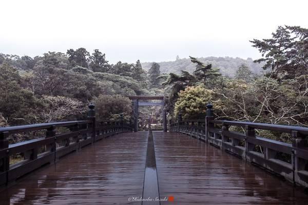 Cây cầu bằng gỗ chìm trong mây, tạo nên một vẻ đẹp tĩnh lặng.
