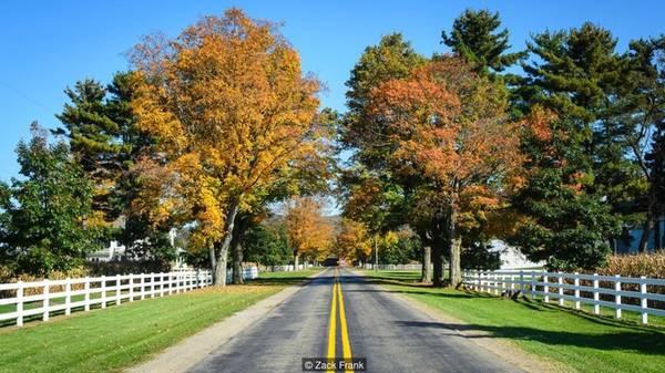 Cuộc sống ở Allegheny Lái xe vòng quanh Allegheny, du khách có thể dừng nghỉ ở những vùng thôn quê xinh đẹp giữa các cánh rừng rậm. Giữa các dãy núi, vùng đất mở rộng ra nhiều thung lũng lớn, chính là nơi các gia đình dùng làm đất canh tác, trồng trọt và nuôi gia súc.