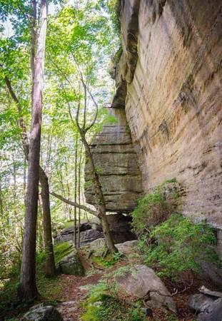 Thiên đường cho người thích đi bộ đường dài Khu vực này bao gồm nhiều đồi núi, thung lũng và hình thành do sự vận động của hàng trăm dòng sông suối chảy xuyên qua vùng rừng núi. Allegheny là chốn thiên đường cho người mê đi bộ đường dài, thích khám phá vùng xa xôi và nhiều loại địa hình từ vách đá tới rừng già. Nổi bật nhất là con đường mòn North Country National Scenic Trail dài 150 km đi qua Allegheny. Nó bắt đầu từ New York, trải dài 7.400 km qua 7 bang và kết thúc tại North Dakota.