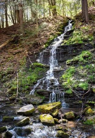 """Một chiếc """"tủ lạnh"""" tự nhiên Một trong những khu vực ít được khám phá nhất ở công viên Allegany là thác nước Bridal cao hơn 11 m chảy theo một con lạch nhỏ có tác dụng như một chiếc """"tủ lạnh"""" tự nhiên. Vào những ngày nắng nóng, không khí ở dòng chảy này mát hơn vùng thung lũng xung quanh tới vài độ. Tuy nhiên, thác nước này không có trên bản đồ, muốn tìm tới nơi bạn phải có kiểm lâm hoặc dân địa phương đi cùng."""