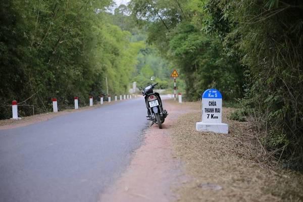 Để đến với chùa Thanh Mai, du khách đi theo dọc đường quốc lộ 18 hướng Hà Nội - Quảng Ninh. Con đường tìm về chốn cửa thiền không hề dễ dàng, quanh co ôm theo núi đã được vỗ về bởi không khí trong lành và ngắm nhìn phong mọc từ chân núi lên chùa. Ảnh: Chuồn chuồn Kym.