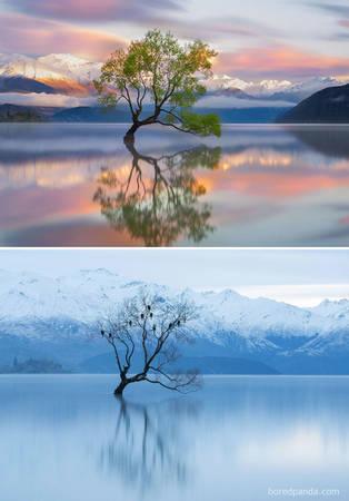 Hồ Wanaka, New Zealand