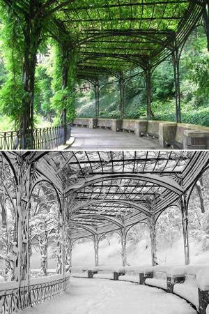 Pergola, Conservatory Garden, Central Park, New York, Mỹ