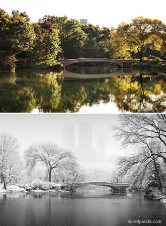 Central Park, New York, Mỹ