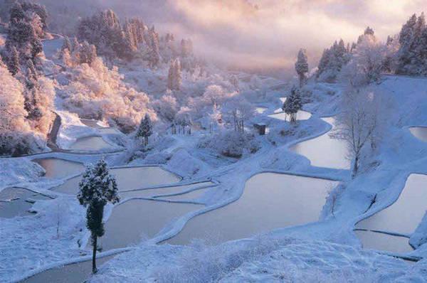 Vẻ đẹp bất tận và bí ẩn của thiên nhiên  Nhật Bản được tự nhiên ban tặng rất nhiều phong cảnh tự nhiên đẹp tới mức bạn phải trầm trồ. Nhiều du khách vẫn hào hứng khám phá các điểm đến đẹp mê đắm khác trong mỗi hành trình của mình.