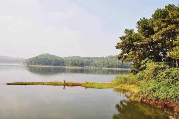Hồ Đồng Chương là một hồ nước ngọt thiên nhiên nằm ở huyện Nho Quan, tỉnh Ninh Bình. Hồ nằm uốn lượn quanh các vạt đồi thông và có chu vi gần 8 km. Xung quanh hồ là những vạt đồi thông soi bóng tạo nên một không gian trong lành và thơ mộng giữa núi rừng đại ngàn. Ảnh: Đỗ Kiên.