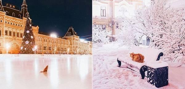 Một trong những địa điểm nổi tiếng của thành phố được nữ nhiếp ảnh gia chụp lại là rạp hát Bolshoi, nhà thờ Saint Basil, quảng trường Đỏ...