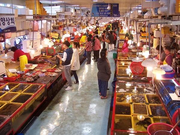 Khu chợ có đồ ăn ngon nhất - Jagalchi, Busan (Hàn Quốc): Jagalchi là chợ hải sản lớn nhất Hàn Quốc, 50% hải sản bày bán ở nước này đều có nguồn từ khu chợ này. Ảnh: Wiki.