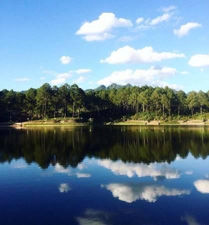 Rừng thông bản Áng thuộc xã Đông Sang, huyện Mộc Châu, tỉnh Sơn La, rộng 43 ha với sự kết hợp của hai loại thông là thông địa phương và thông Đà Lạt, và 5 ha hồ nước tự nhiên. Để tới đây, từ trung tâm thị trấn Mộc Châu, bạn đi theo quốc lộ 43 khoảng 2 km. Ảnh: Huynhhuuanhngoc.