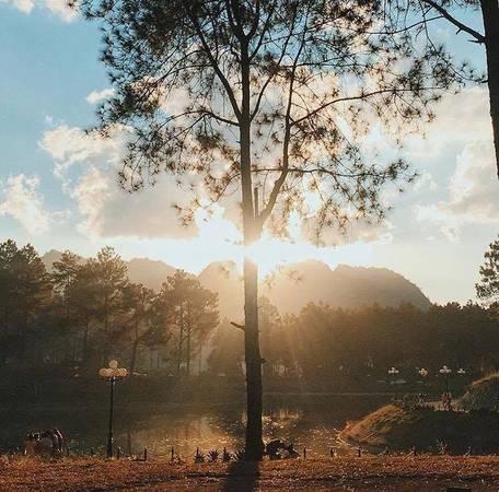 Tới đây, bạn có thể cắm trại giữa rừng thông, hoặc thuê xe đạp đôi tham quan quanh khu rừng, đi dạo ven hồ hay đạp vịt để tận hưởng không khí trong lành, ngắm nhìn cảnh sắc khi hoàng hôn xuống, lúc bình minh lên, chụp những bức hình ảo diệu. Ảnh: Pihacem.