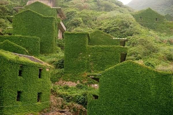 Nhiều ngôi nhà gần như hòa vào màu xanh của núi rừng - Ảnh: Exclusivepix Media