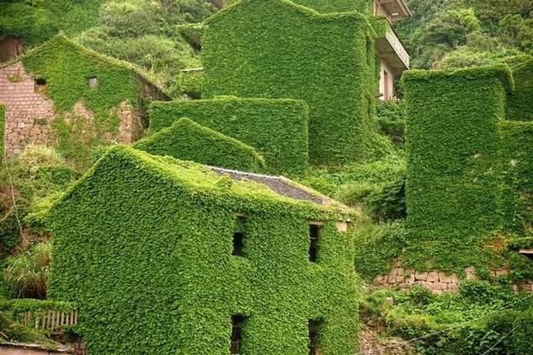"""Những ngôi nhà """"xanh"""" cho du khách cảm giác tò mò - Ảnh: Exclusivepix Media"""