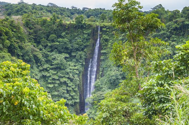 Thác nước Papapapaitai ấn tượng với dòng nước trắng xóa đổ vào một hẻm núi khổng lồ.