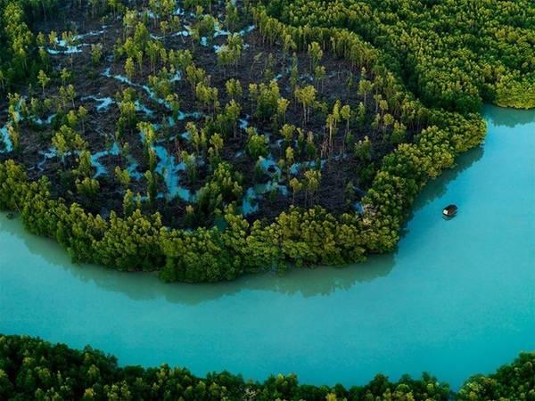 Những rặng đước xinh đẹp viền theo mũi bán đảo Malaysia ở Johor, điểm cực nam trên đất liền của châu Á. Ảnh: Justin Guariglia/National Geographic.