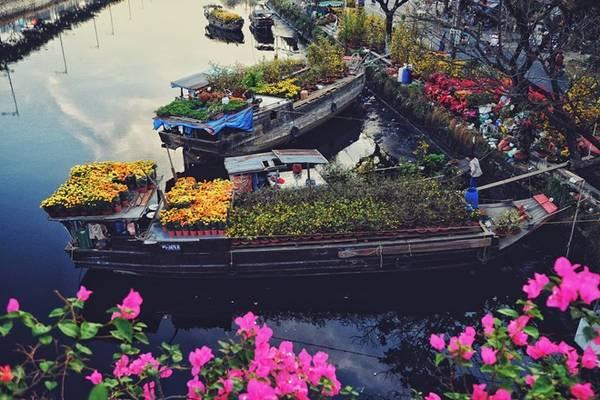 Hương sắc những màu hoa ngày Tết. Ảnh: Hau Nguyen