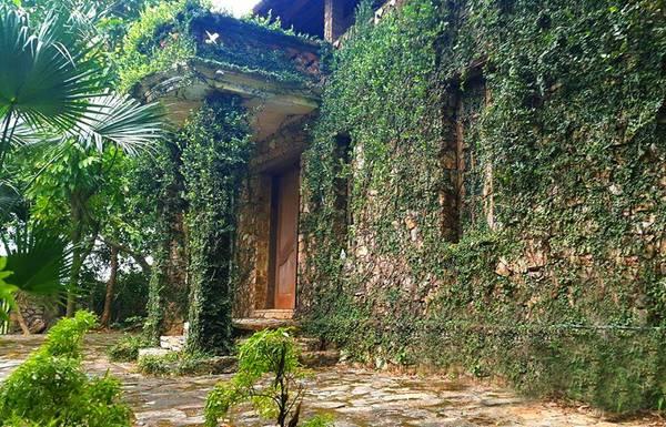 Jungle-house-bac-ninh-ivivu-1